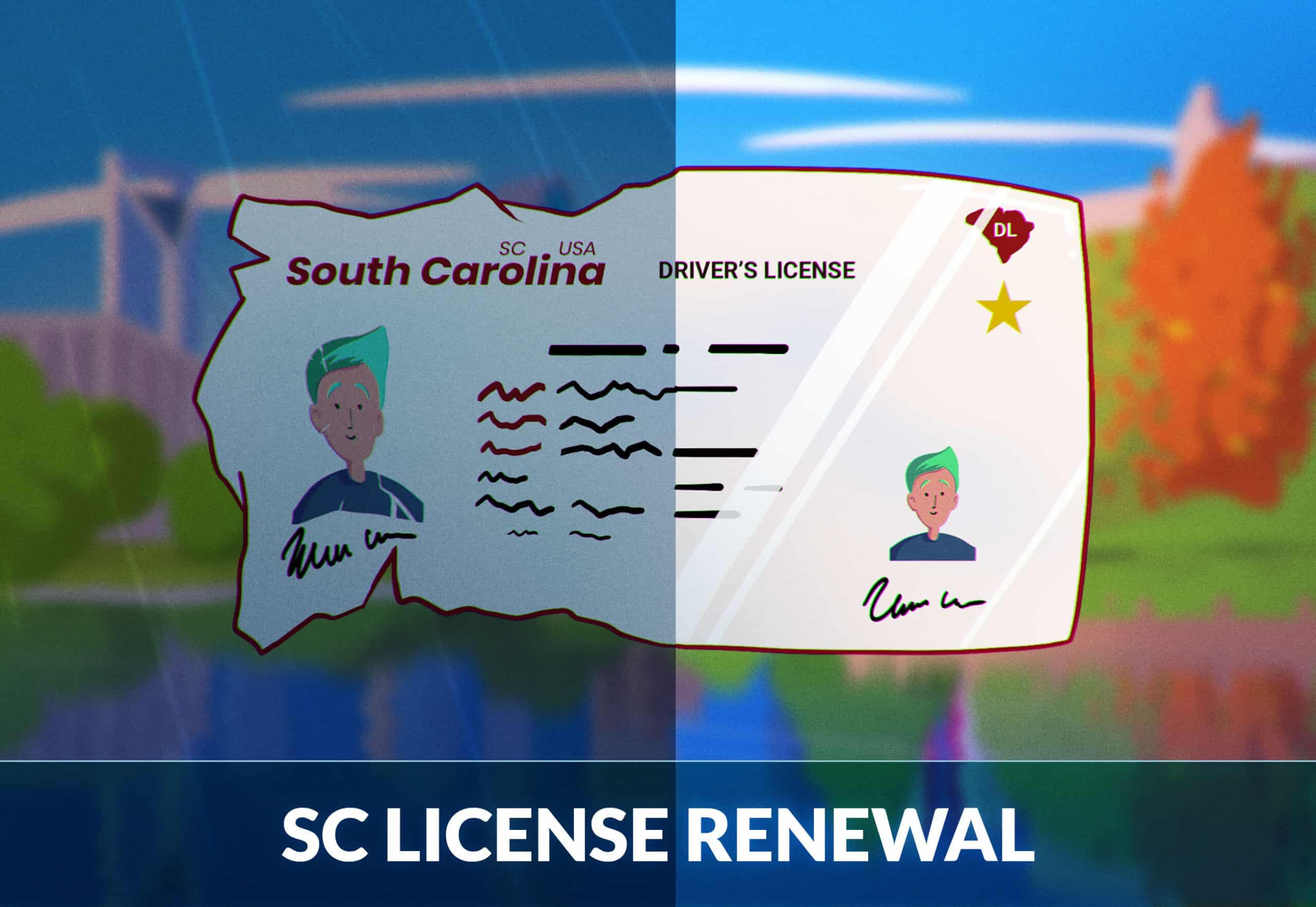 South Carolina Driver's License Renewal: A Complete  Guide