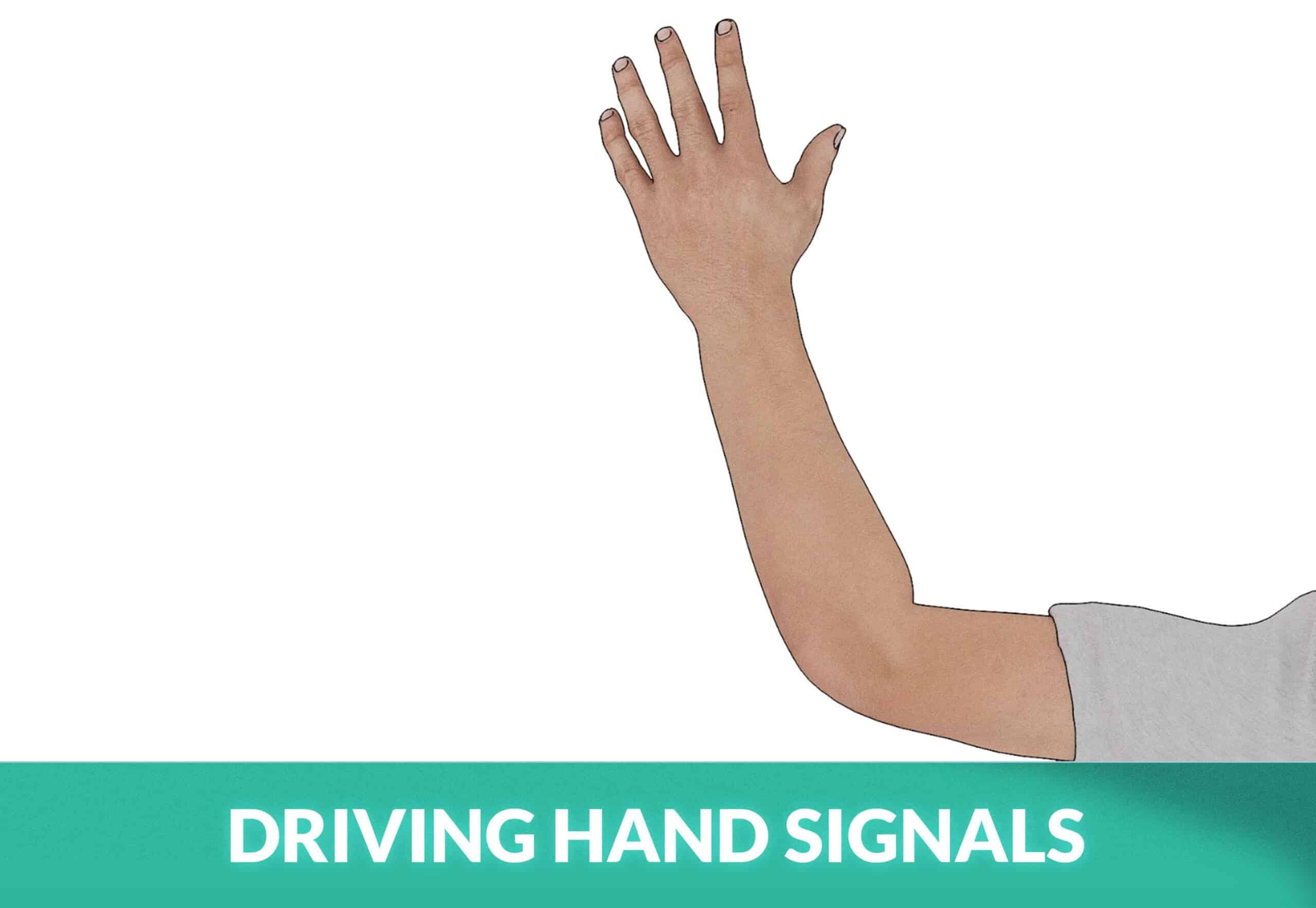 DRIVING HAND SIGNALS
