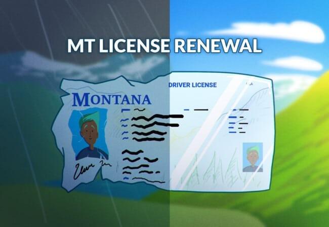 Montana Drivers License Renewal